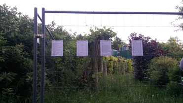 Ein Ausschnitt von einem Park. Es dämmert. Im Park ein Bauzaun aus grauem Draht. Am Zaun vier Minutentexte in Reihe aufgehängt.
