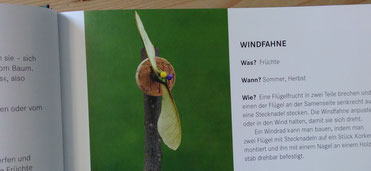 Windfahne aus Naturmaterial