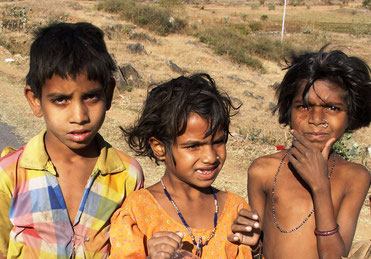 Halbwüste Thar Indien