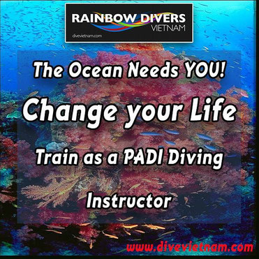 Dive with Rainbow Divers