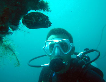 Alex Harker diving with some cool fish