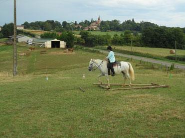 stage équitation western,  balade à cheval , randonnée pique nique pour cavaliers, cours, promenade, gers, mirande, marciac, 32
