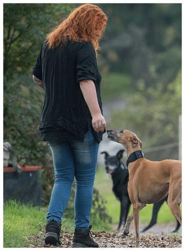 über Simone Mangold, Hund, Hundetrainer, Hundeverhaltenstherapeutin, Hundetraining, Rems-Murr-Kreis