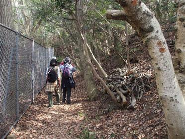 高塚山の自然に触れて