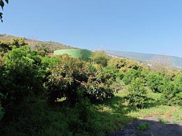 Grundstück und Wassertank