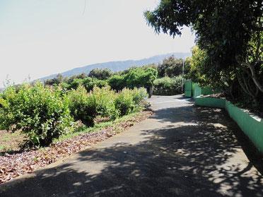 1. Zugang zur Finca
