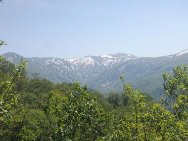 左から平ヶ倉、千沼ヶ原、烏帽子岳だったかと。