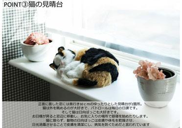 猫の見晴台 正面に面した窓に奥行き30cmのゆったりとした見晴台を設置