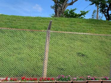 辺野古基地の外側には鉄線が張り巡らされています