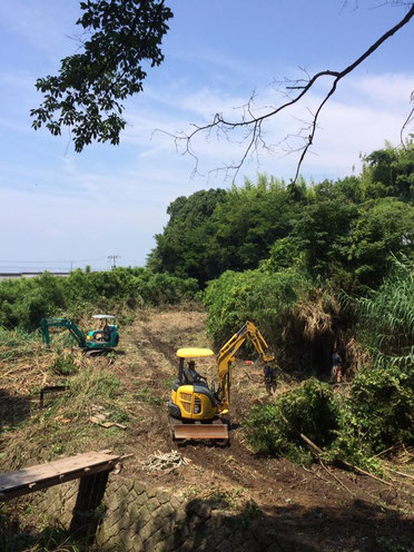 伐採・開墾