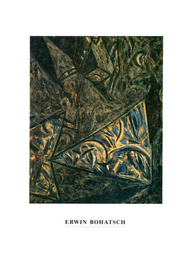 Erwin Bohatsch - Buch / Katalog (Book / Catalogue).