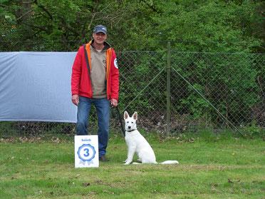 Weisse Schäferhunde Ausstellung