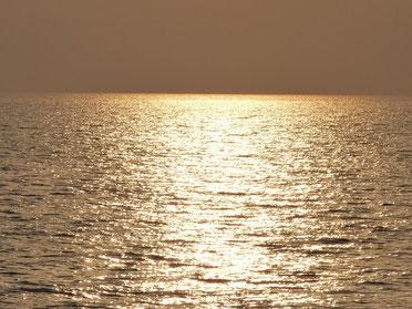 まだ沈んでは無いですが、水面が夕日色に染まっていく時間