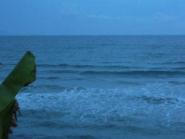 明日は波有りそうですね!夕方5時ぐらいに少し反応してましたよ♪