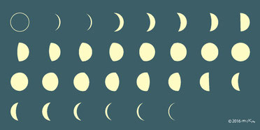 十五夜とお月見