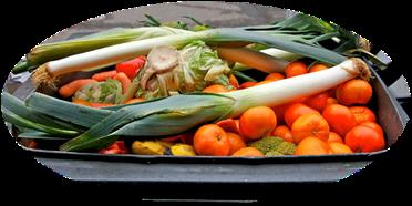 WWF-Studie: Lebensmittelverschwendung