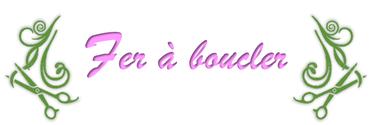 Logo Fer à boucler La Maison du Coiffeur