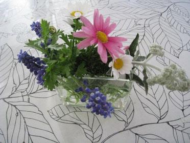 庭で摘んだ花♪
