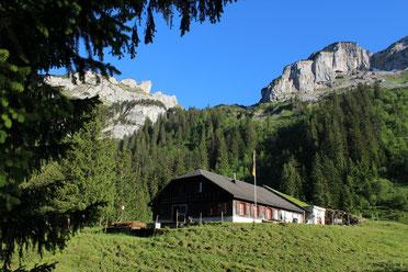 Alp Alplen