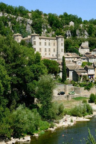Le Château d'une trés vieille famille Française les de Voguë, toujours propiétaire des lieux
