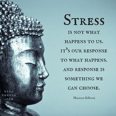 EL STRESS Y EL MINDFULNESS