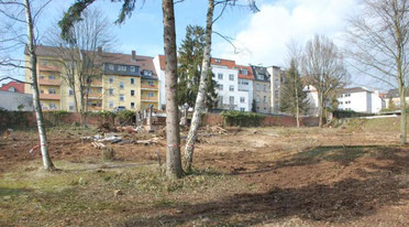 Am Galgengraben 2013, vor dem Bau, nach dem Entfernen von etwa 80 Bäumen.