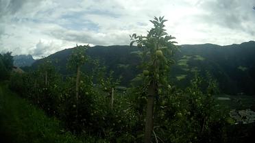 Alpen Italien Südtirol E5 Wandern Berge Apfelplantage