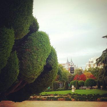 Park El Retiro in Madrid Yoga Meditation
