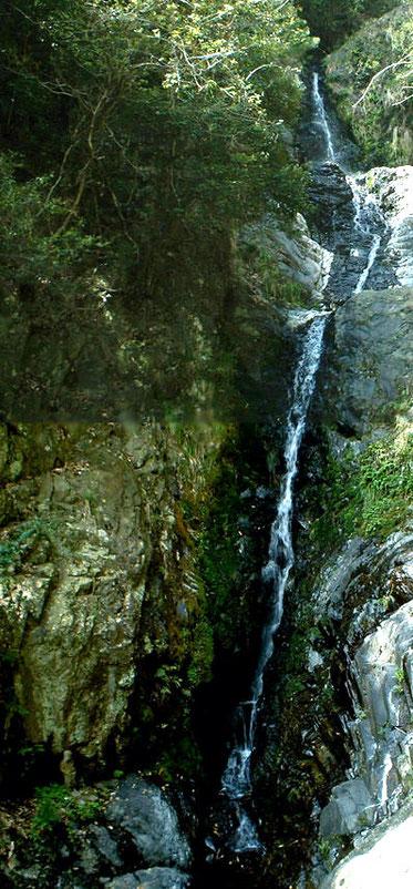 石澄の滝:落差25mといわれ、近づくのが難しい「幻の滝」です。 滝の手前を東へ登ると、箕面の六個山(ろっかやま)へのハイキングコースに合流。