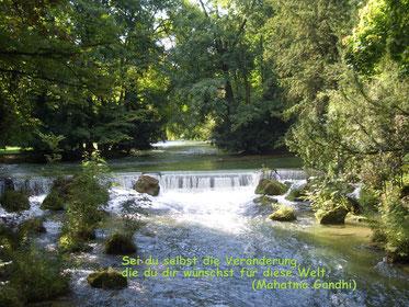 Englischer Garten - Wasserfall