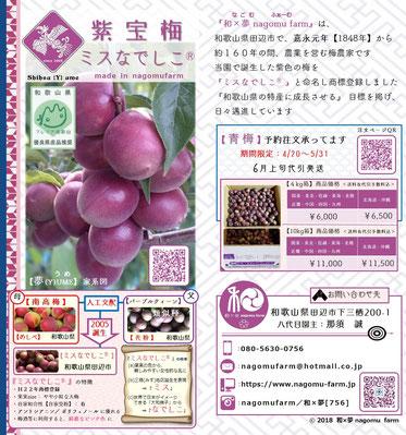紫宝梅『ミスなでしこⓇ』 2018 パンフ表面