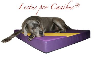 Medizinisches Hundebett mit Viskoschaum 120cm x 100cm x 12 cm für Hunde von einem Körpergewicht ab 50kg bis 95kg