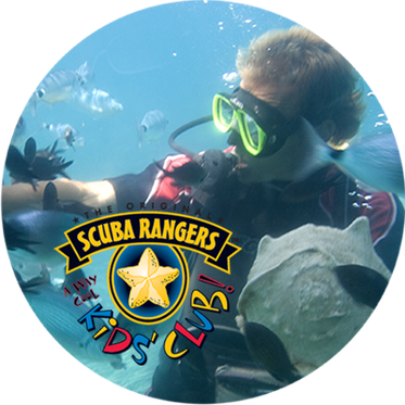 About Diving AG - Dekofoto Kids Club