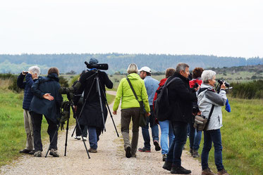 Die Teilnehmer beim Beobachten über der Dreiborner Hochfläche     -Foto: Marion Zöller