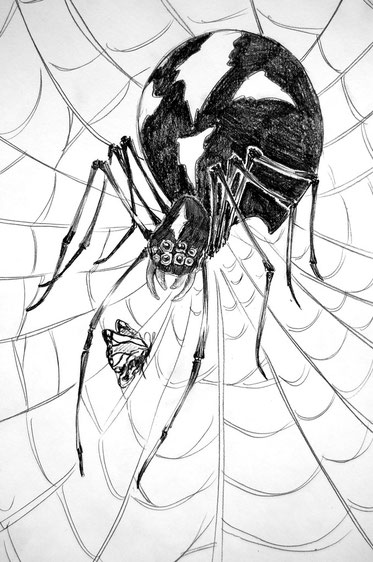spider drawing traditional art pencil