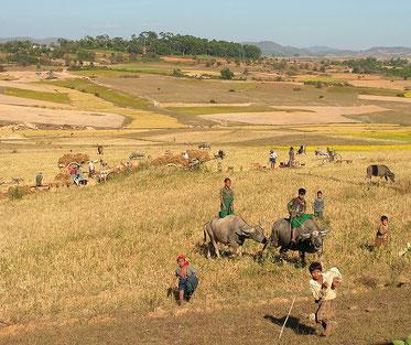 Hochland in Burma