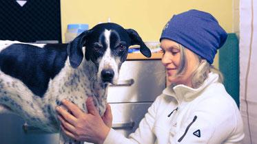 Carola Peters Hundephysiotherapie