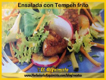 Ensalada con tempeh frito - Herbolario Alquimista Arrecife Lanzarote