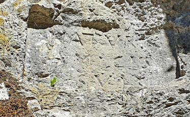 "Das Begrüssungsmotto: ""Natura amicis suis"""