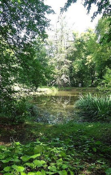 Im Hirschgarten