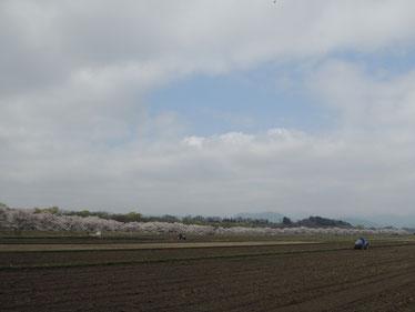 農作業をする方々との牧歌的な風景が何ともGOOD!