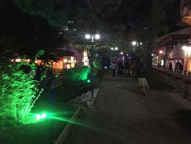 宝塚花の道3