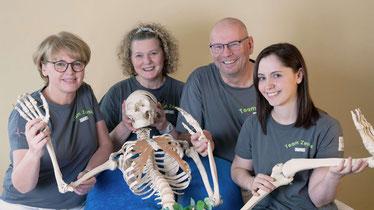 Physiotherapie Team Zenke Hildesheim