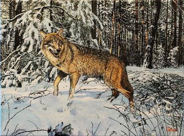 Wolf im Brandenburg 30 x 40   Preis: 150 €   E-BAY