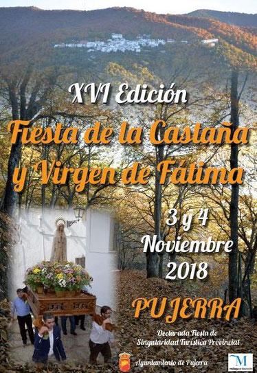 Programa de la Fiesta de la Castaña en Pujerra