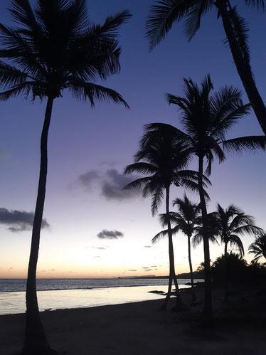 Lever de soleil à  la plage des Dauphins à Moule en Guadeloupe