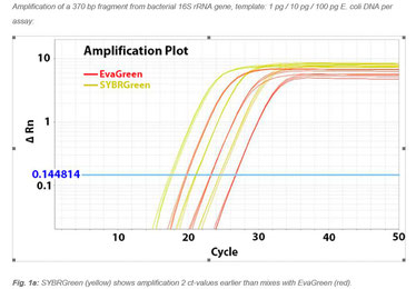 Sybrgreen PCR Mastermix with higher Amplification result than Mastermix with Evagreen as dye