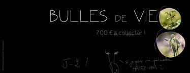 Bulles de Vie : campagne financement participatif 2019 @johannegicquel