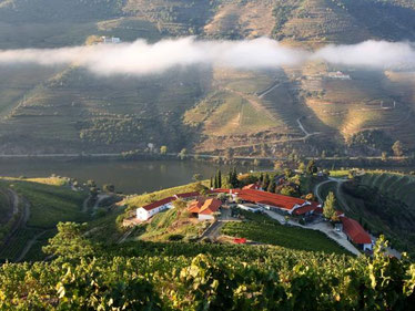 Quinta Nova Winery House Douro