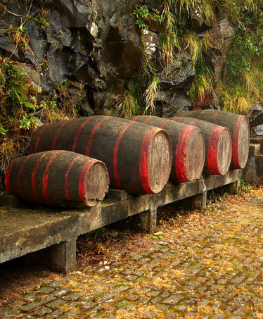 Food-and-Wine-Walking-Tour-in-funchal-best-things-to-do-madeira